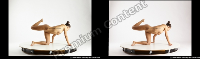 Nude Gymnastic poses Woman White Kneeling poses - ALL Slim Kneeling poses - on one knee long brown 3D Stereoscopic poses