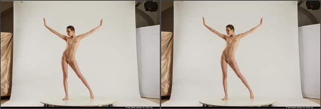 Nude Woman White Standing poses - ALL Slim medium brown Standing poses - simple 3D Stereoscopic poses
